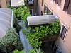 Courtyard, Rome hotel