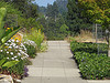 Hillside sidewalk