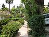 Stately garden path