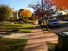 Bright autumn day