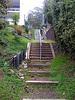 Wild steps
