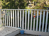 Fence #1