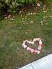 Love on the side of the sidewalk