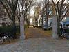 Autumn walkway