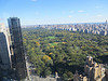 Leaves starting to turn in Central Park